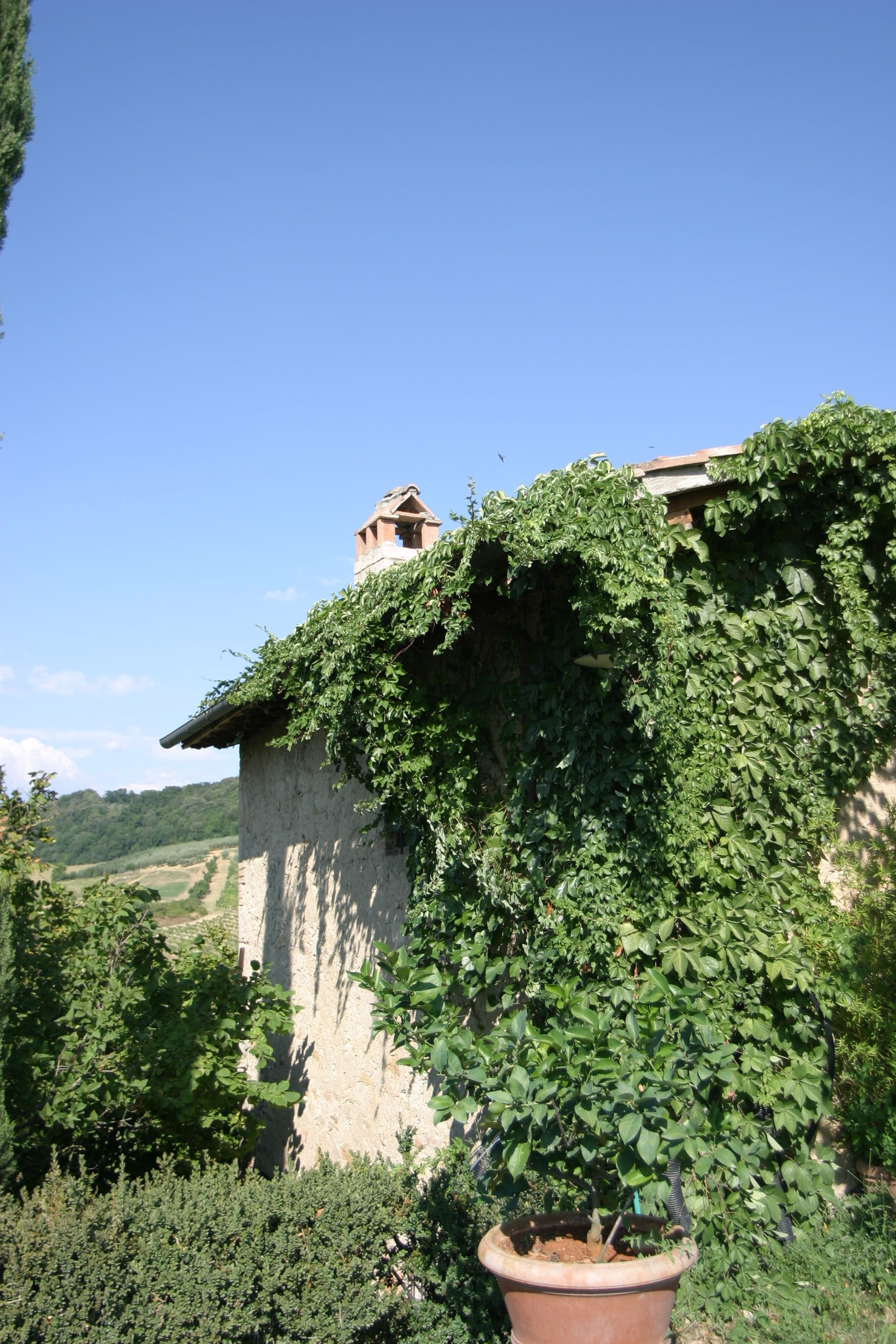 Apartment Tenuta Il Tresto - Ginestra Holiday Home photo 18417159